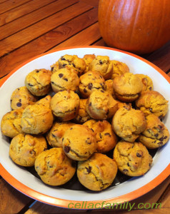 pumpkinmuffinplate